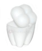 Picture of Porta Dente Dentista